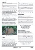 panurus - Ornitologisk forening for Als og Sundeved - Page 5