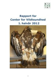 Årsrapport 2011, CVS - DTU Orbit - Danmarks Tekniske Universitet