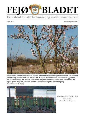 Fejoe-Bladet, 2010, nr. 3 - Nyheder fra Fejø – Huse til salg