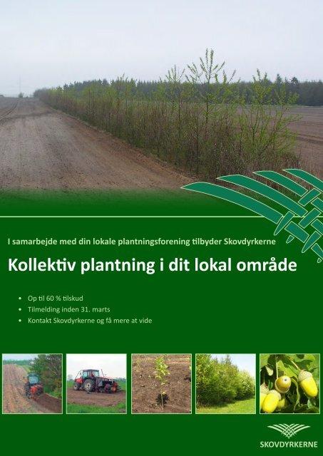 Download vores præsentations materiale - Skovdyrkerforeningen