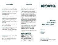 Hent uddybende folder - Design af rapportudtræk fra fagsystemer og ...