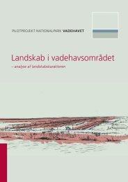 Landskab i vadehavsområdet - Danmarks nationalparker