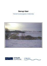 Pixi - Forundersøgelse af Serup kær i kort version ... - Struer kommune