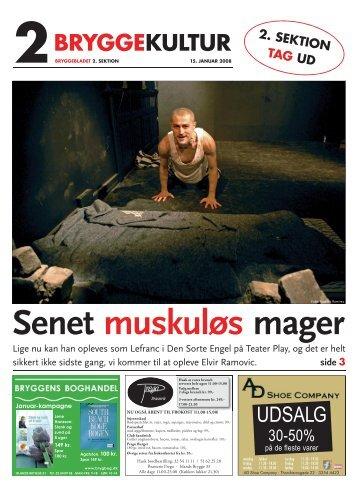 Nr. 01-2008 (15.01.2008) - 2. sektion Størrelse - Bryggebladet