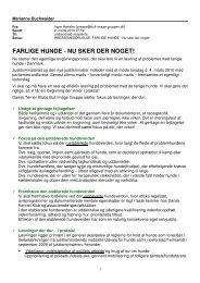 Farlige hunde - nu sker der noge - Dansk Terrier Klubs Bull Image ...