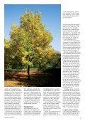 1 - Grønt Miljø - Page 5