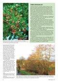 1 - Grønt Miljø - Page 6