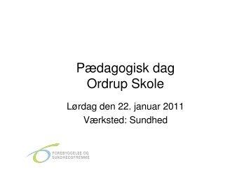 Output fra pædagogisk dag Ordrup Skole 22 0111