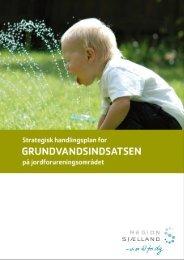 GV Handlingsplan til tryk 120124 (pdf) - Region Sjælland
