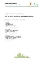 Lundgaard Konsulenterne rekrutterer Chef for Strategi og Personale ...