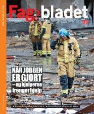 Fagbladet 2011 11 HEL