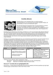 Candida albicans-dt-112008