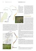 Natuurhistorisch Maandblad - Maas in Beeld - Page 5