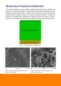 Comparison of Smectite Clays in Underarm Products - Elementis ... - Page 4