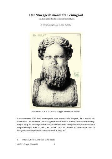 Den skæggede mand v4 - Aigis