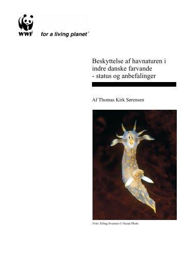 Beskyttelse af havnaturen i indre danske farvande - status og ...