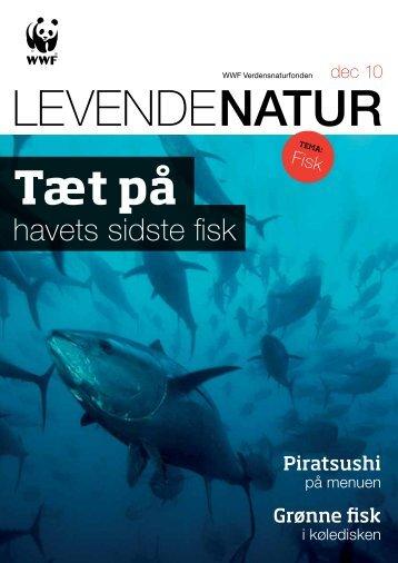 havets sidste fisk - WWF