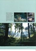 Levende Natur - WWF - Page 7