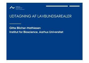 Udtagning af lavbundsarealer - Aarhus Universitet