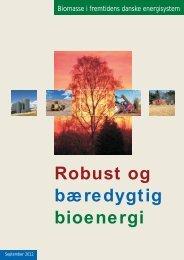 Robust og bioenergi bæredygtig