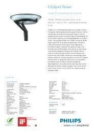 CitySpirit Street Color CDS482 urban-lighting luminaire - Philips