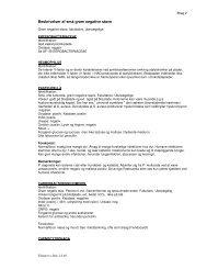 Beskrivelses - Bilag 2.pdf - e-Dok