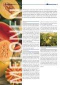 """1x1-Warenkunde """"Melonen"""" - khd-Blog - Seite 2"""