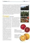 """1x1-Warenkunde """"Zitrus-Früchte"""" - khd-Blog - Seite 2"""