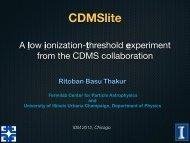 CDMSlite - KICP Workshops