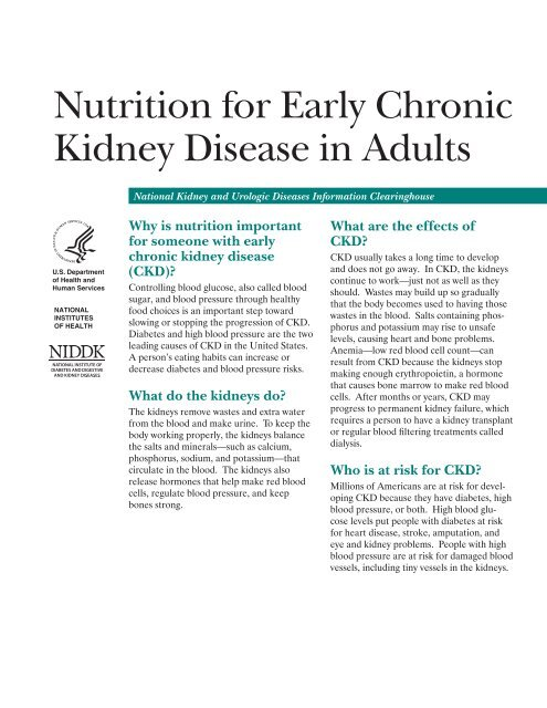 Nutrition For Early Chronic Kidney Disease In Adults