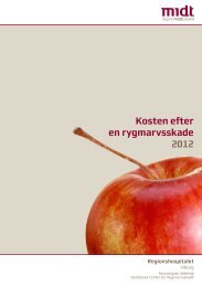 Kosten efter en rygmarvsskade 2012 - e-Dok