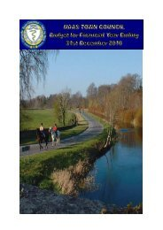 Naas Town Council Budget 2010 - Kildare.ie