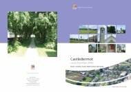 Castledermot LOcal Area Plan 2009 (pdf) - Kildare.ie