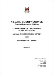 KILDARE COUNTY COUNCIL - Kildare.ie