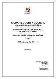 KILDARE COUNTY COUNCIL - Kildare.ie