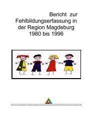 Bericht zur Fehlbildungserfassung in der Region Magdeburg 1980 ...