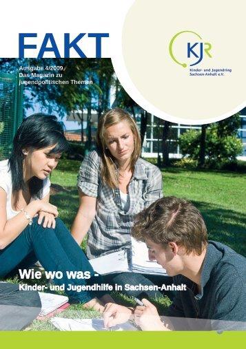 Kinder- und Jugendhilfe in Sachsen-Anhalt