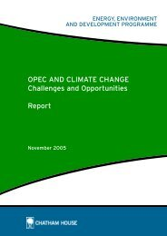 OPEC and Climate Change: Challenges and Opportunities