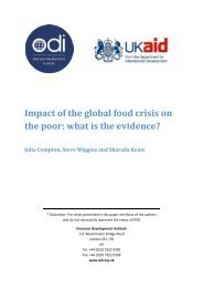 Impact of the Global Food Crisis on the Poor