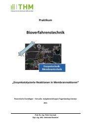 Enzymkatalysierte Reaktionen in Membranreaktoren