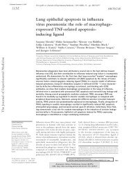 Lung epithelial apoptosis in influenza virus pneumonia : the ... - KOPS
