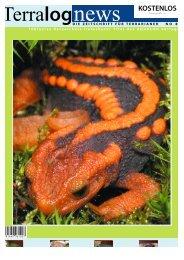 Terralognews - Die Wirbellosen