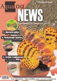Aqualog NEWS 98 - Die Wirbellosen