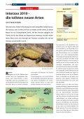 Terra - Die Wirbellosen - Seite 6