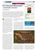 D Der Chinesische Wasserskink - Die Wirbellosen - Seite 3