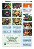 D Der Chinesische Wasserskink - Die Wirbellosen - Seite 5