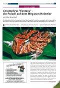 Terra - Die Wirbellosen - Seite 3
