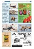 Terra - Die Wirbellosen - Seite 5