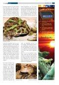 Terra - Die Wirbellosen - Seite 7