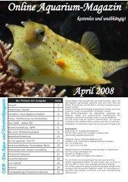OAM-Ausgabe 04/2008 - Die Wirbellosen